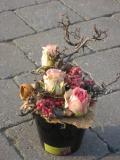 Gevriesdroogde bloemen